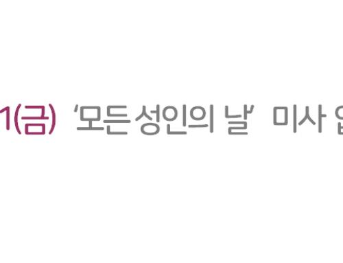 11/1(금) '모든 성인의 날' 미사 없음