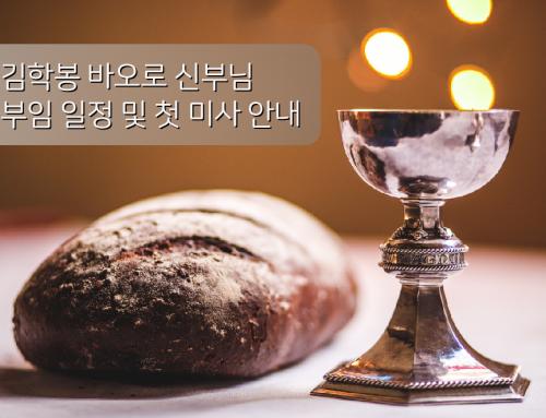 김학봉 바오로 신부님 부임 일정 및 첫 미사 안내